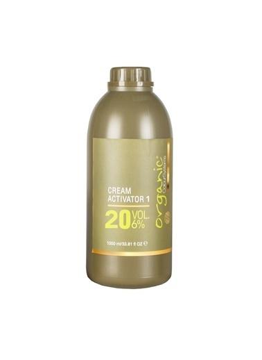 Organic Organic Colour Systems 20 Vol Aktivatör Oksidan %6 No:1 1000ml Renksiz
